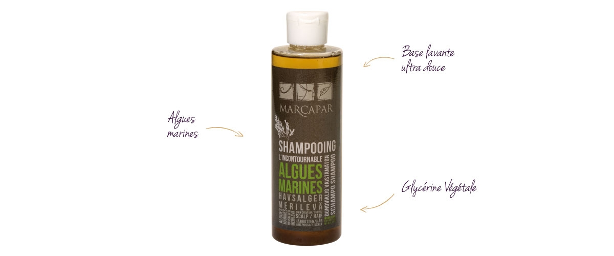 large_shampooing-algues-200-ml-detail_2854